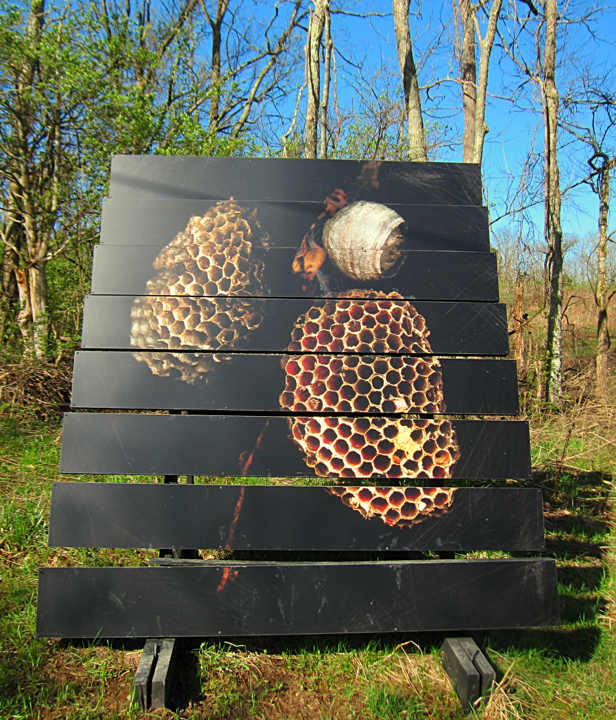 Photo installations at Raven Run by Brian Rust