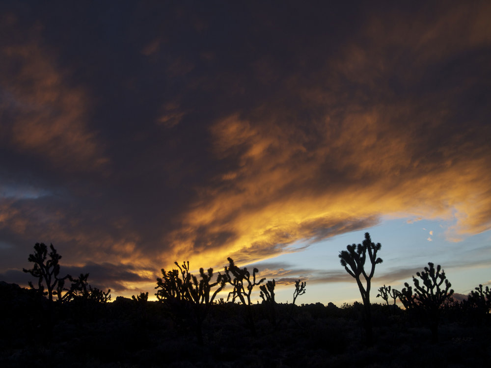 Teutonia Peak, Mojave National Preserve - Photo by Tim Giller