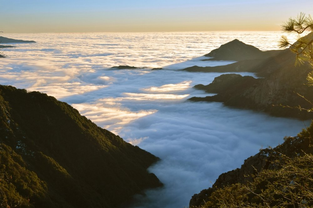 Tule Fog from above. Photo: Tim Giller