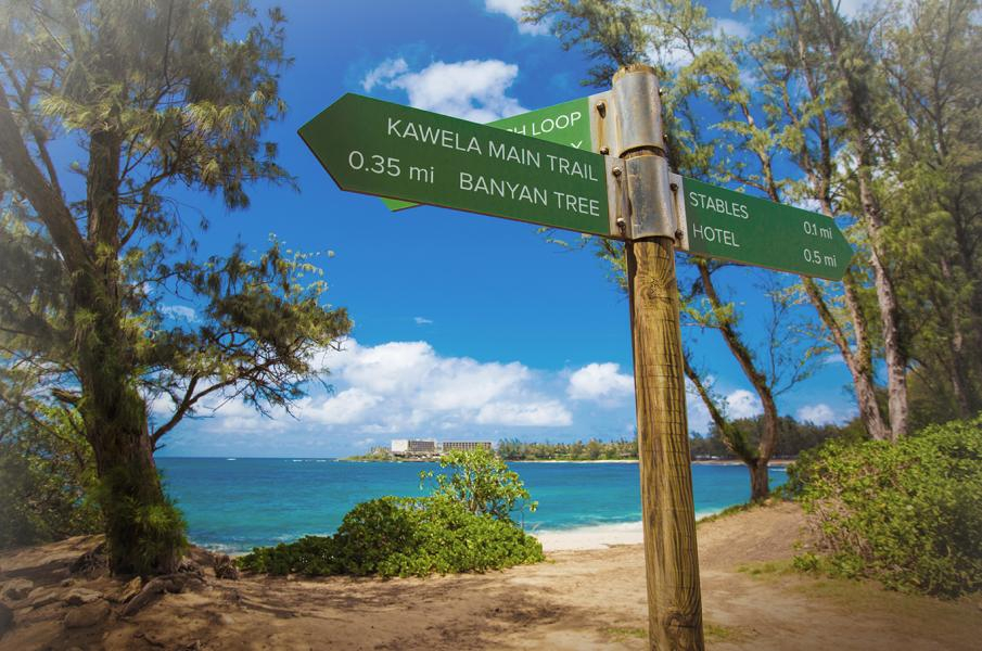 TurtleBayResort_TrailSigns_MC2015_Effect_LoRes.jpg