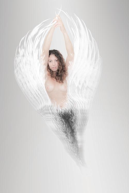 Gina   Kaleidoscope 1