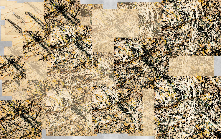0_2016-Web-Pollock-Image First.jpg