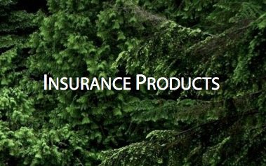 Insurance Products.jpg