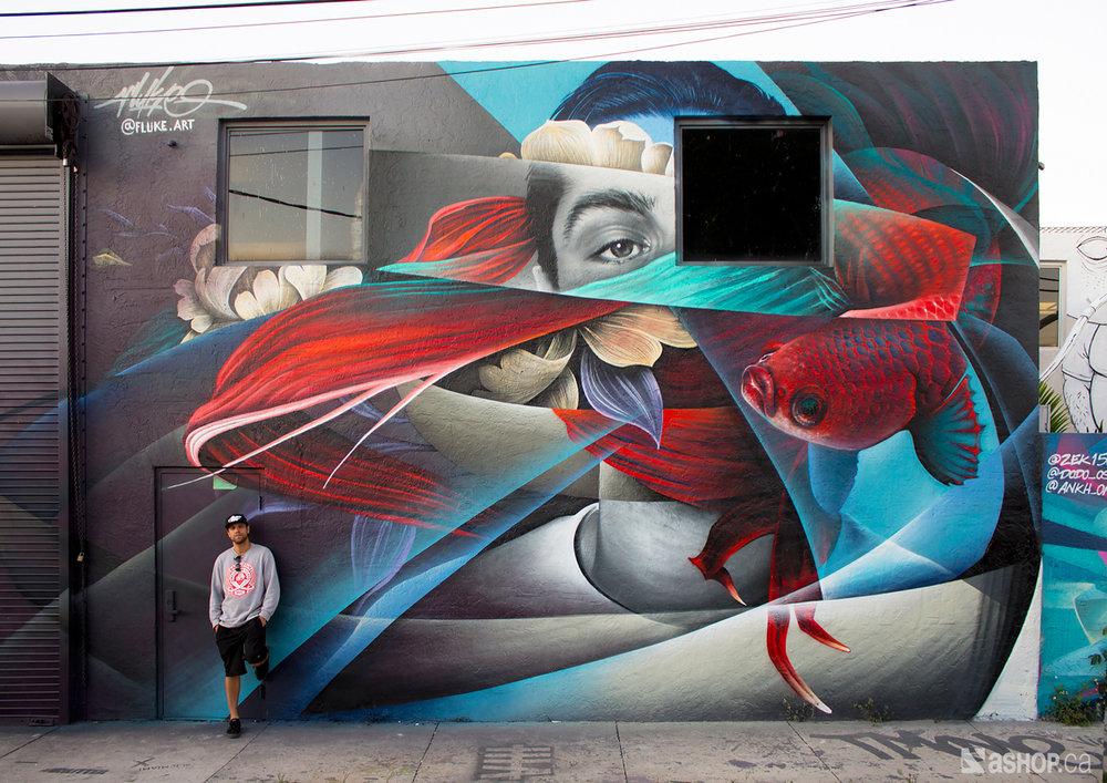 FLUKE - Art Basel Miami 2017