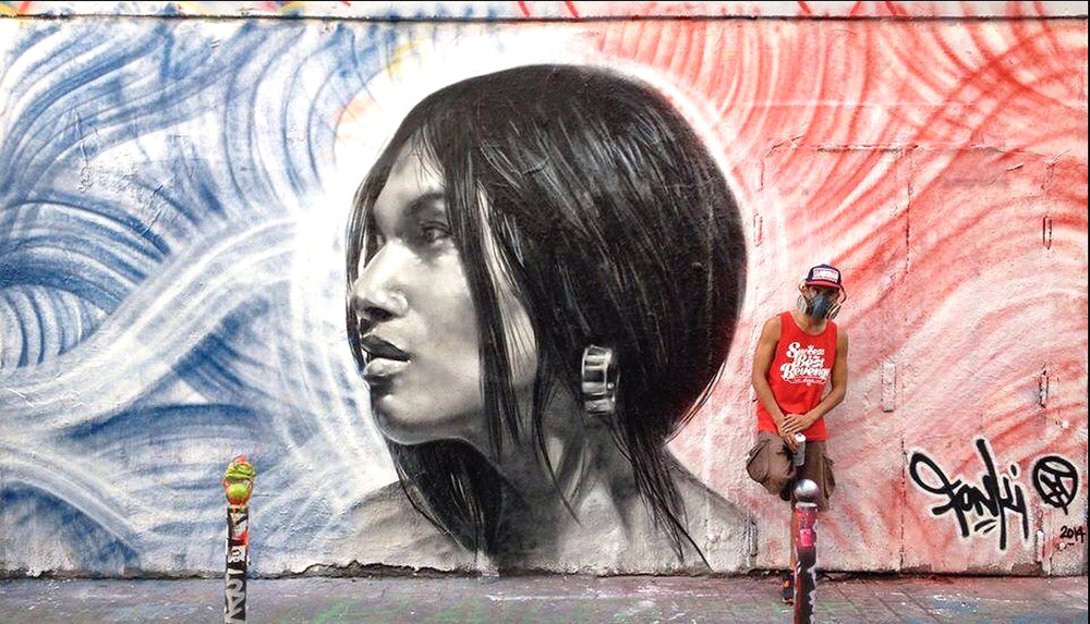 Ashop-Fonki-Exterior mural-France-2014
