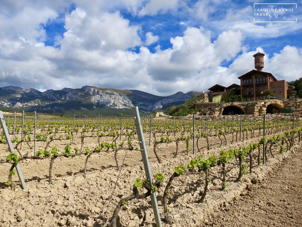 Eguren Ugarte vineyard in La Rioja, Spain