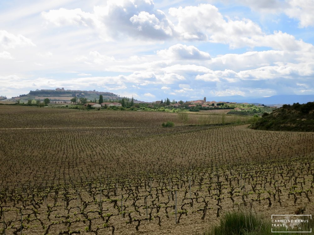 View from hotel room in Rioja wine region in Spain
