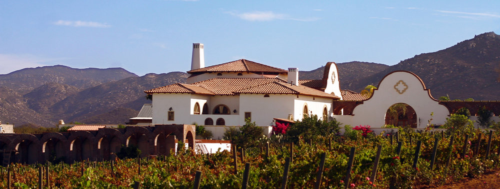 Image from  Adobe Guadalupe Vineyards