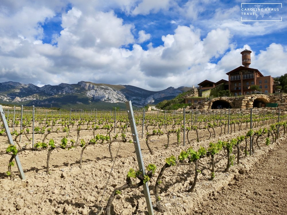 A Quick Guide to the Best Wineries in La Rioja
