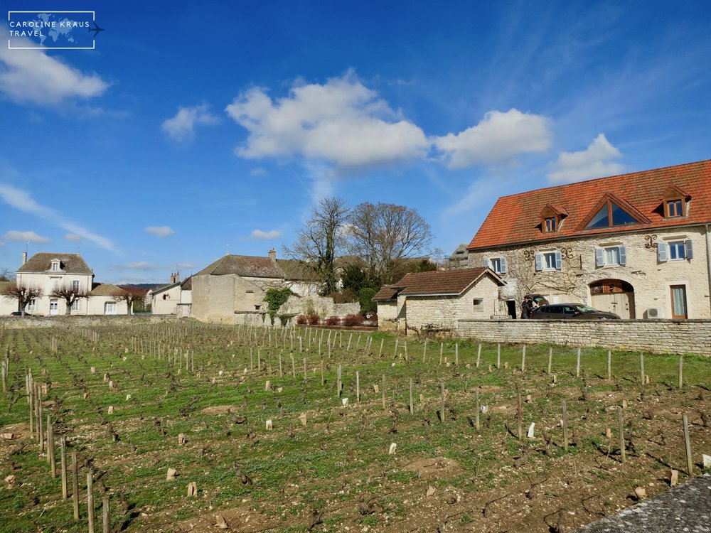 Our house rental in Meursault