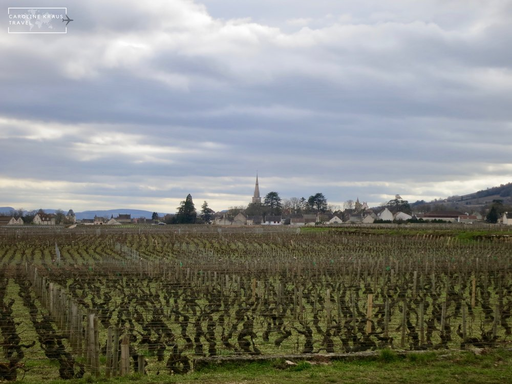 Meursault from a distance on our bike ride through the vineyards