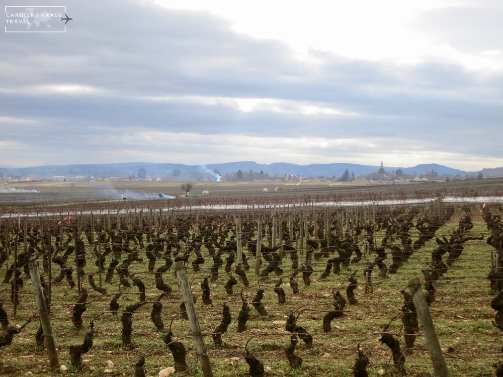 Meursault from a distance and smoke from the burning of pruned vines