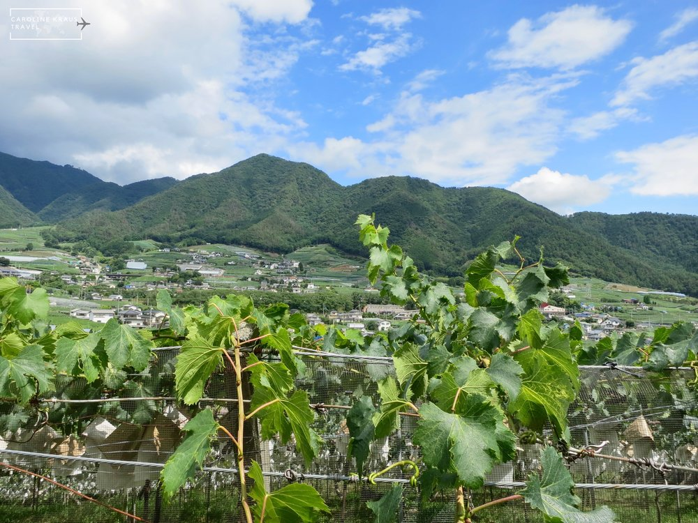 How to Escape to the Katsunuma Wine Region Just Beyond Tokyo