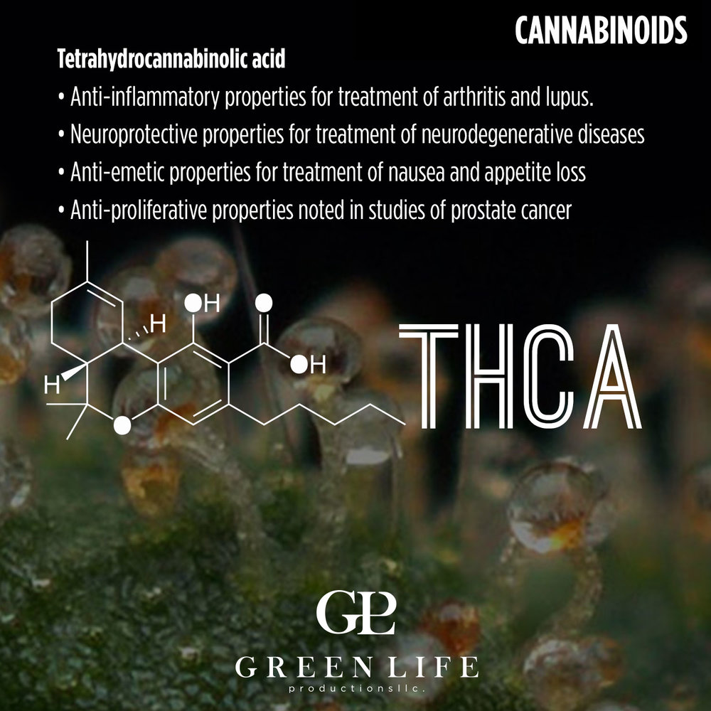 THCA.jpg