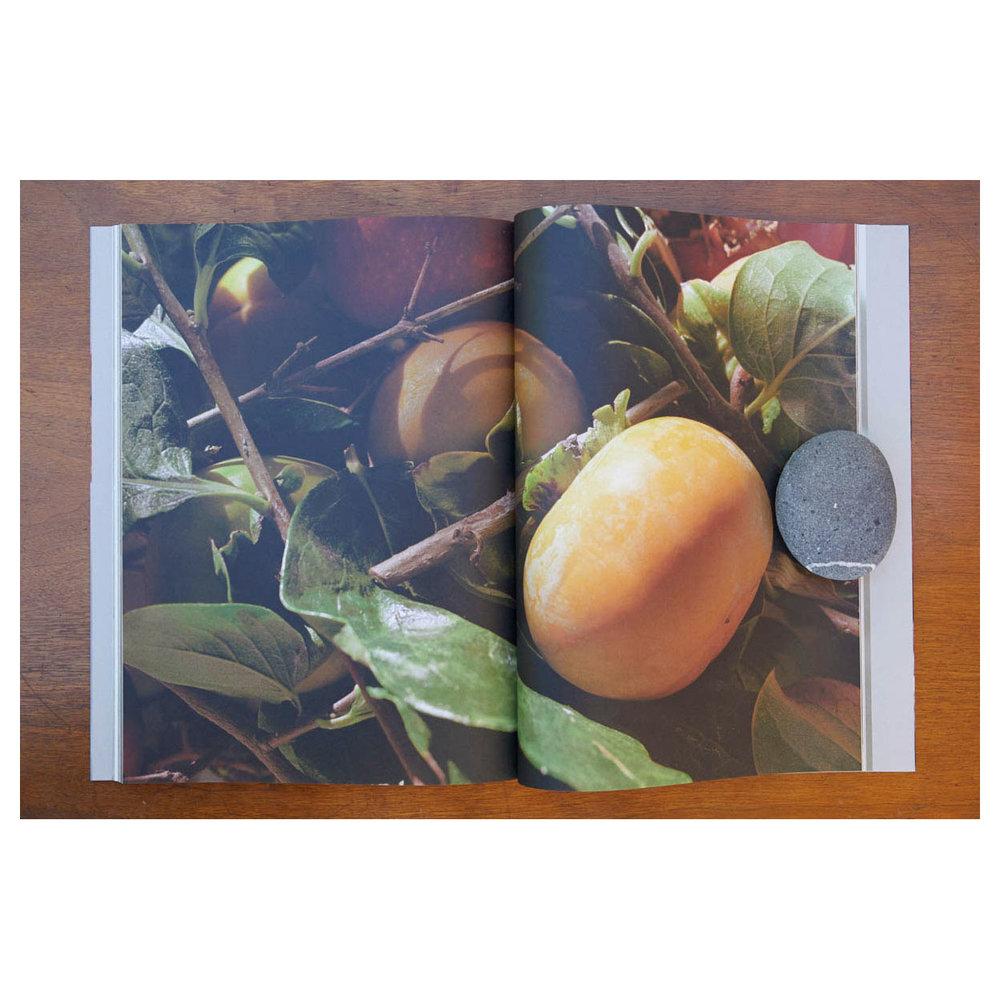 ChezBook0111.jpg