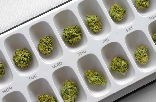 medical-marijuana-stock-cannabis-prescription-pill-case.jpg