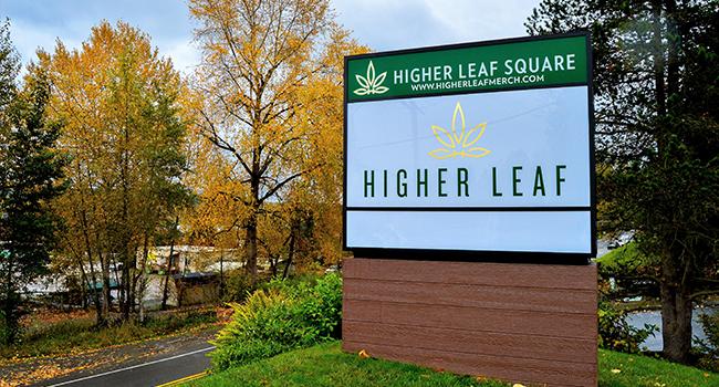Higher Leaf Kirkland.png
