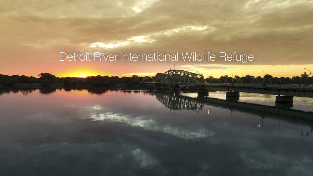 Detroit River International Wildlife Refuge in Detroit, MI. (Ian Shive/USFWS)