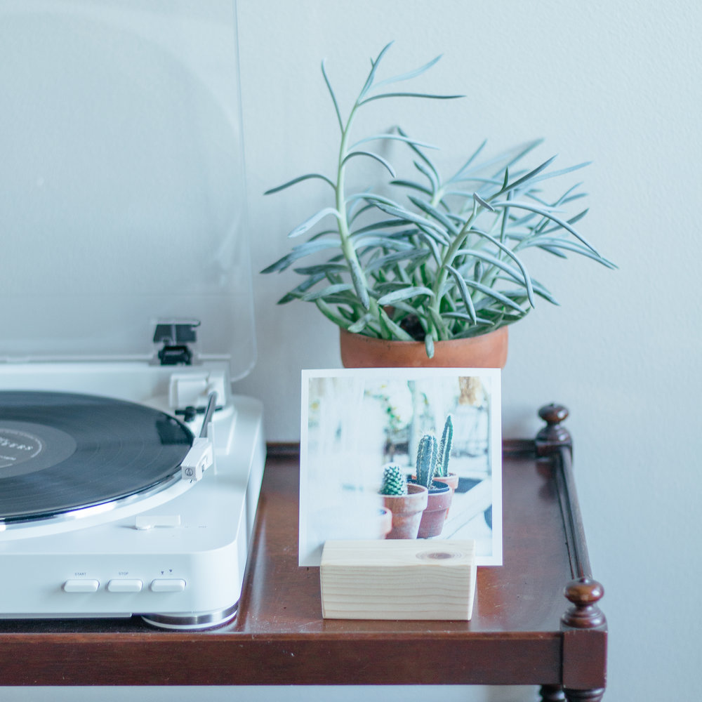 PlantSQ-4.jpg