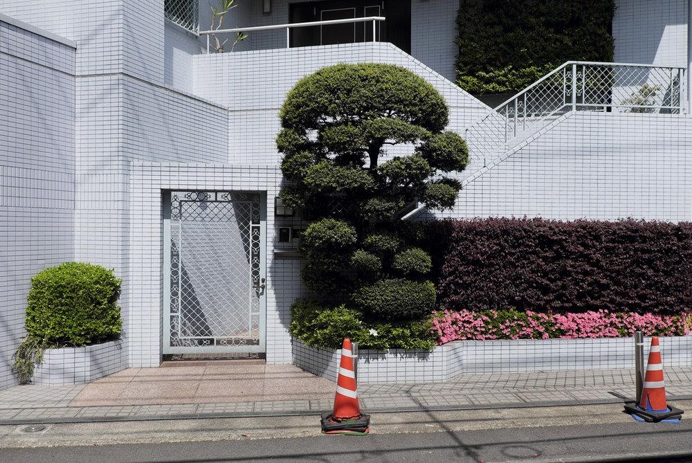 munro_japan_020.jpg