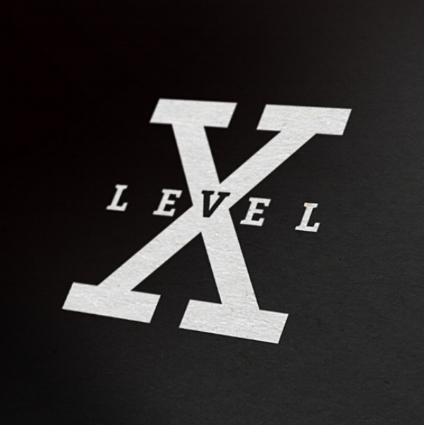 lvlx copy.jpg