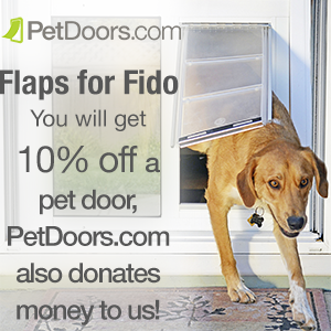 flapsforfido.png