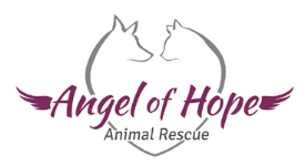 Angel of Hope Animal Rescue