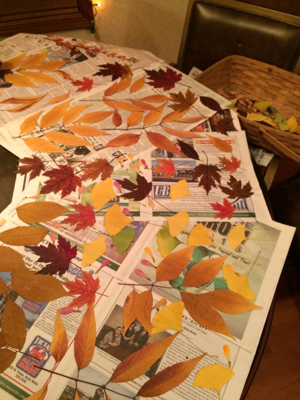 Fall 2016: Pressing fall leaves - color inspiration for our label.