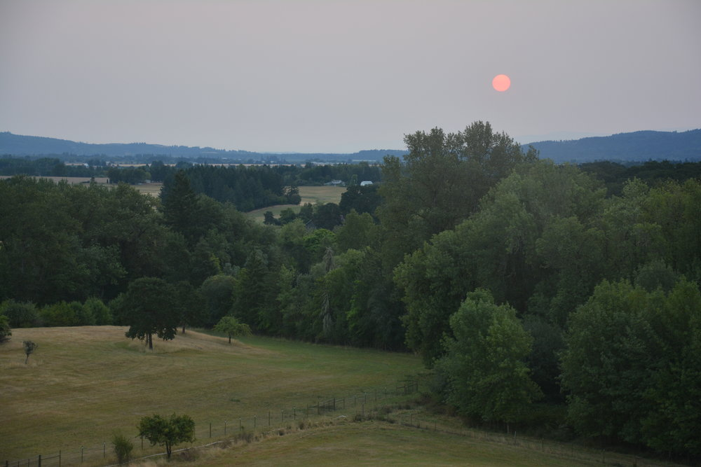Summer 2018, Monmuth Oregon: Another very smoky summer in the Pacific Northwest.