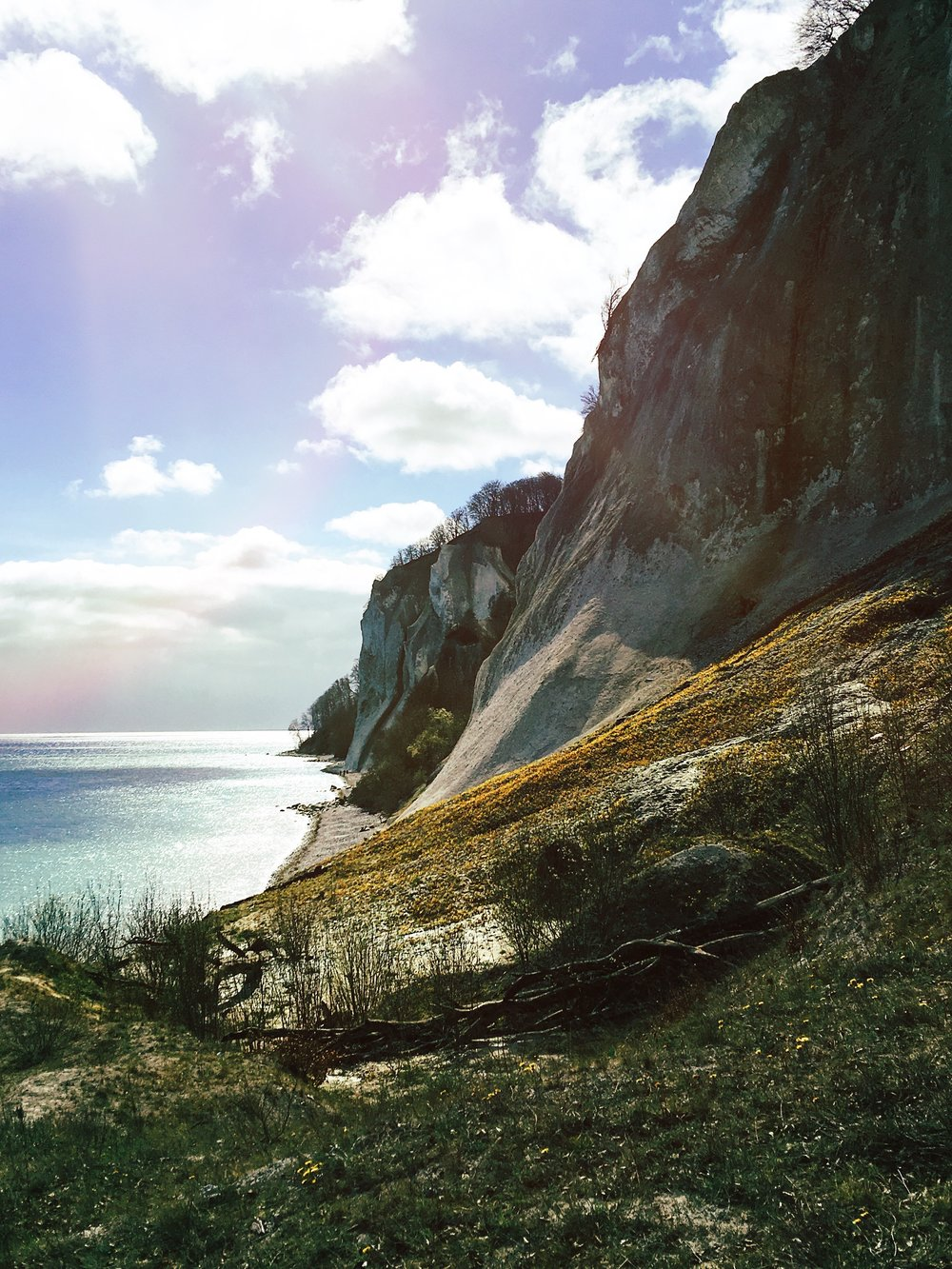 CLIFFS AT MØNS KLINT