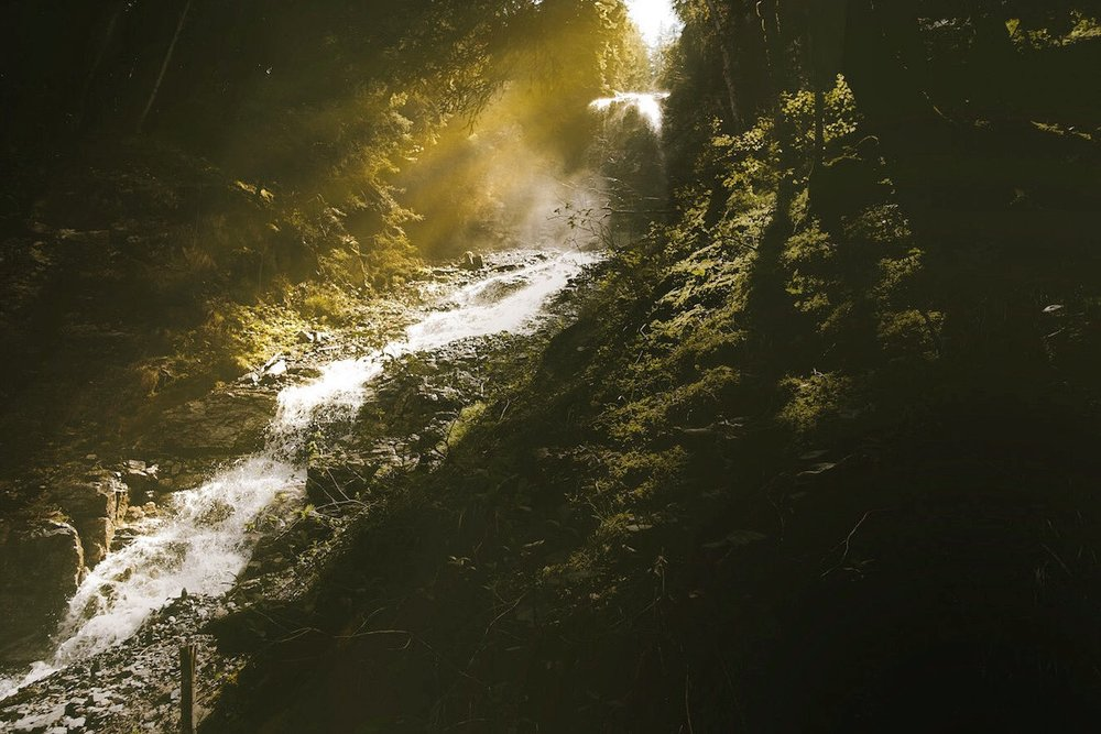 THE GLOW OF A MOUNTAIN STREAM