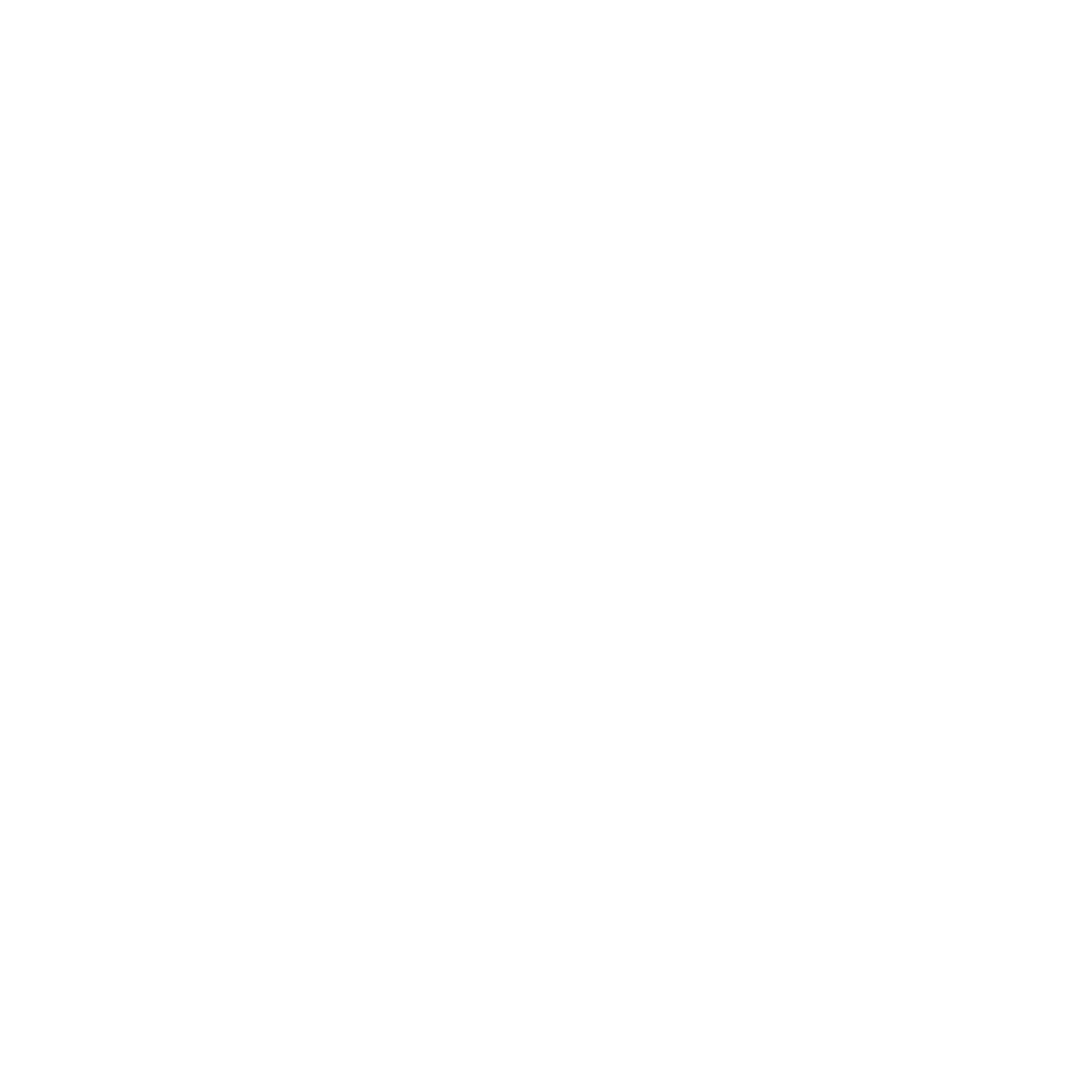 Broadview Avenue Group