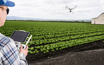 Agriculture_crop mapping.jpg