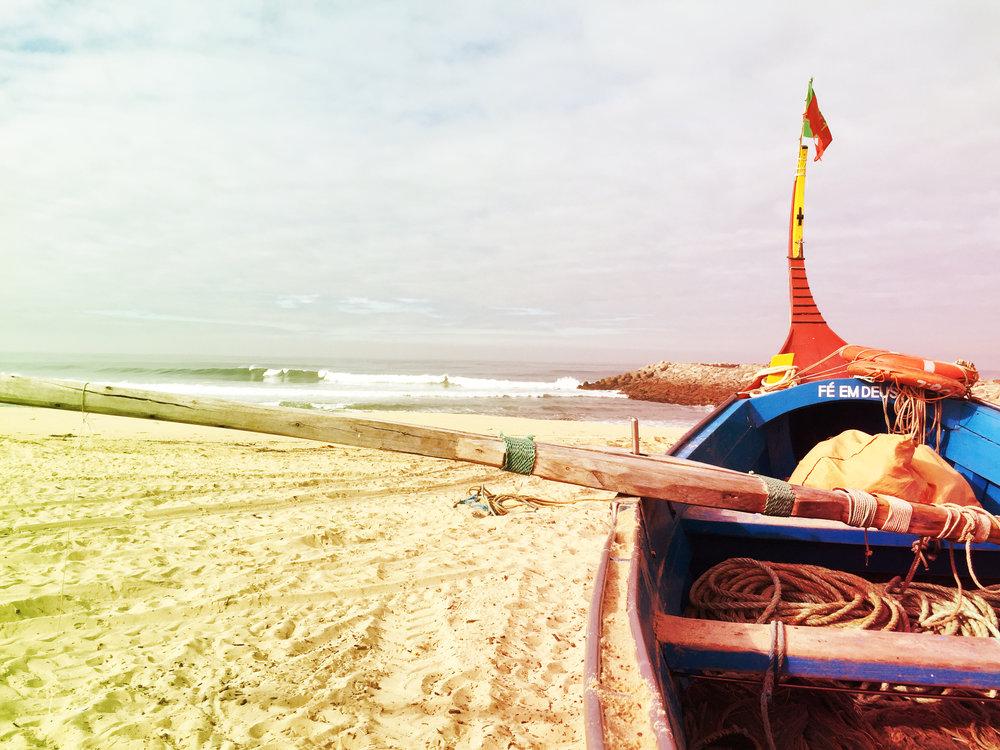 SURF&FISH