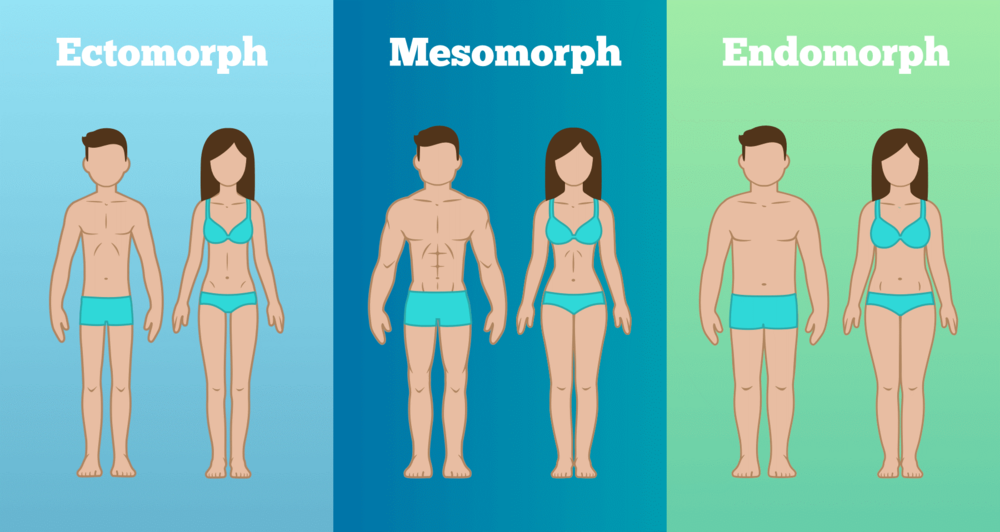 Eat according to your body type.png