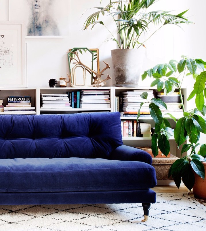 Inky - We'd be hard pushed to declare it, but if you asked quietly for our pick of them all, our fave is this inky royal blue. Paired with our other favourite thing, a velvet sofa. This is theBlanca sofafrom Att Pynta. Add minimal, white walls and some greenery to transform your space into a perfectly formed corner of Scandi heaven.