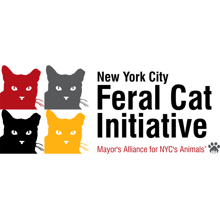 NYCFCI-Logo_sq.png