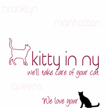 Kitty in NY