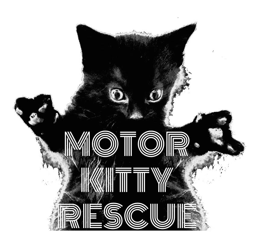 Motor Kitty Rescue