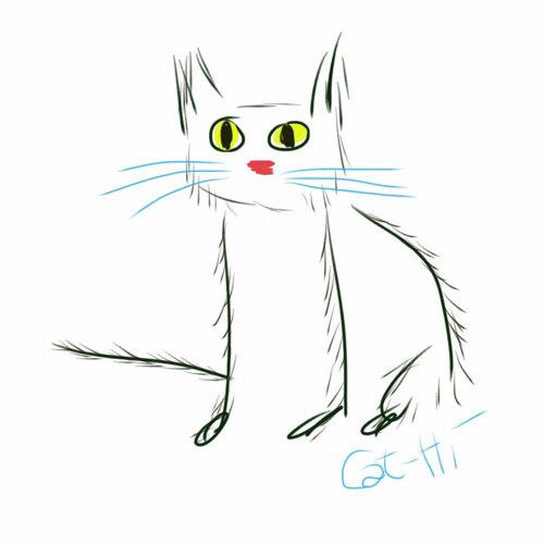 Cat-Hi