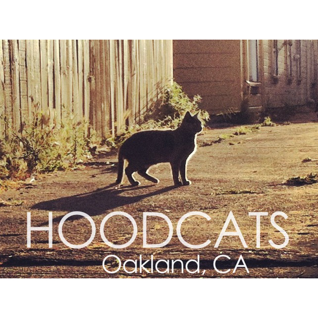 Hoodcats