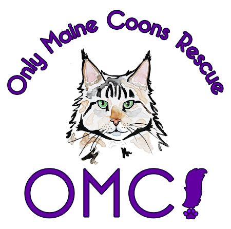 Only Maine Coons Rescue