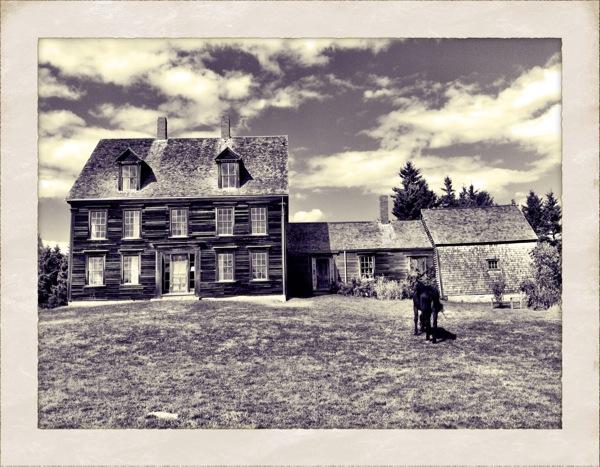 olson-house-21.jpg