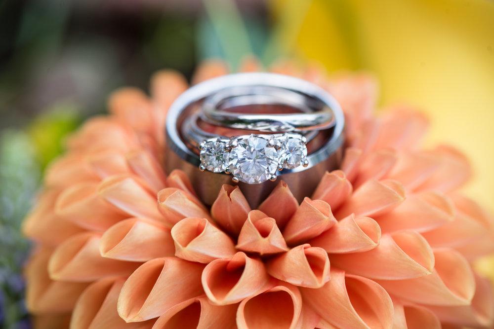 asheville-wedding-photographer-7.jpg