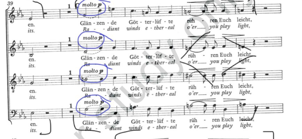 A little snippet of my ForScore-annotated score for Brahms'  Schicksalslied .