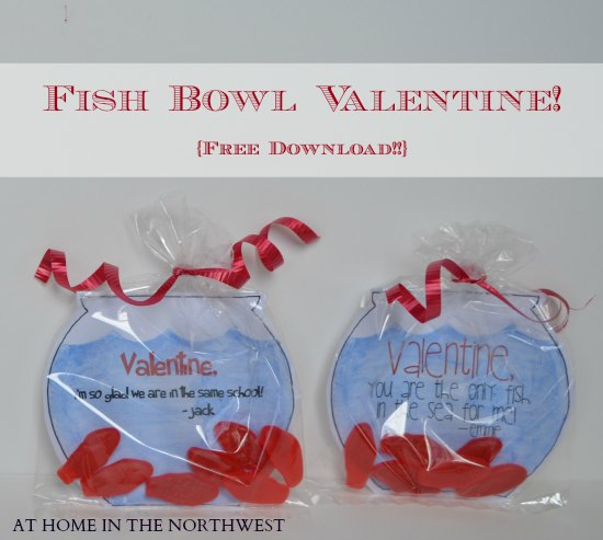 at home in the nw fish bowl valentine