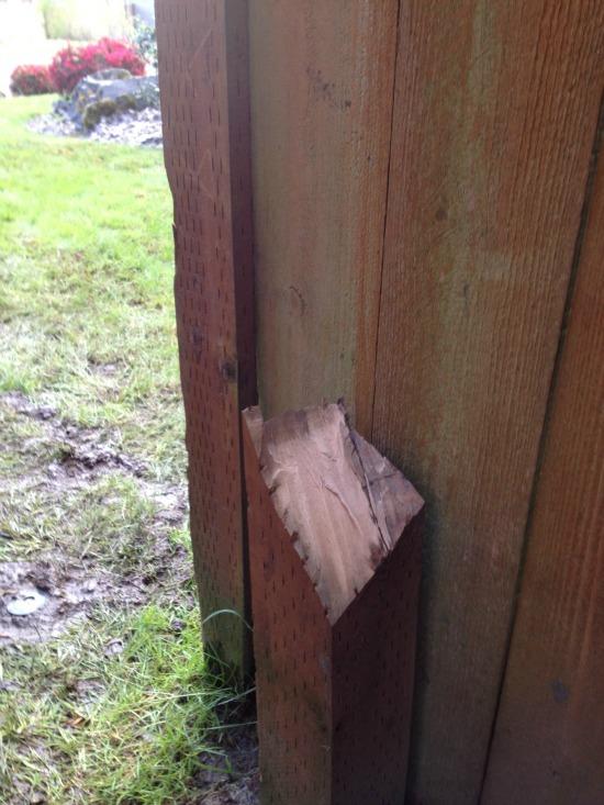broken fence post