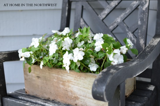 RUSTIC CHAIR AND IMPATIENS 2