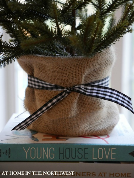 BURLAP and RIBBON WRAPPED TREE