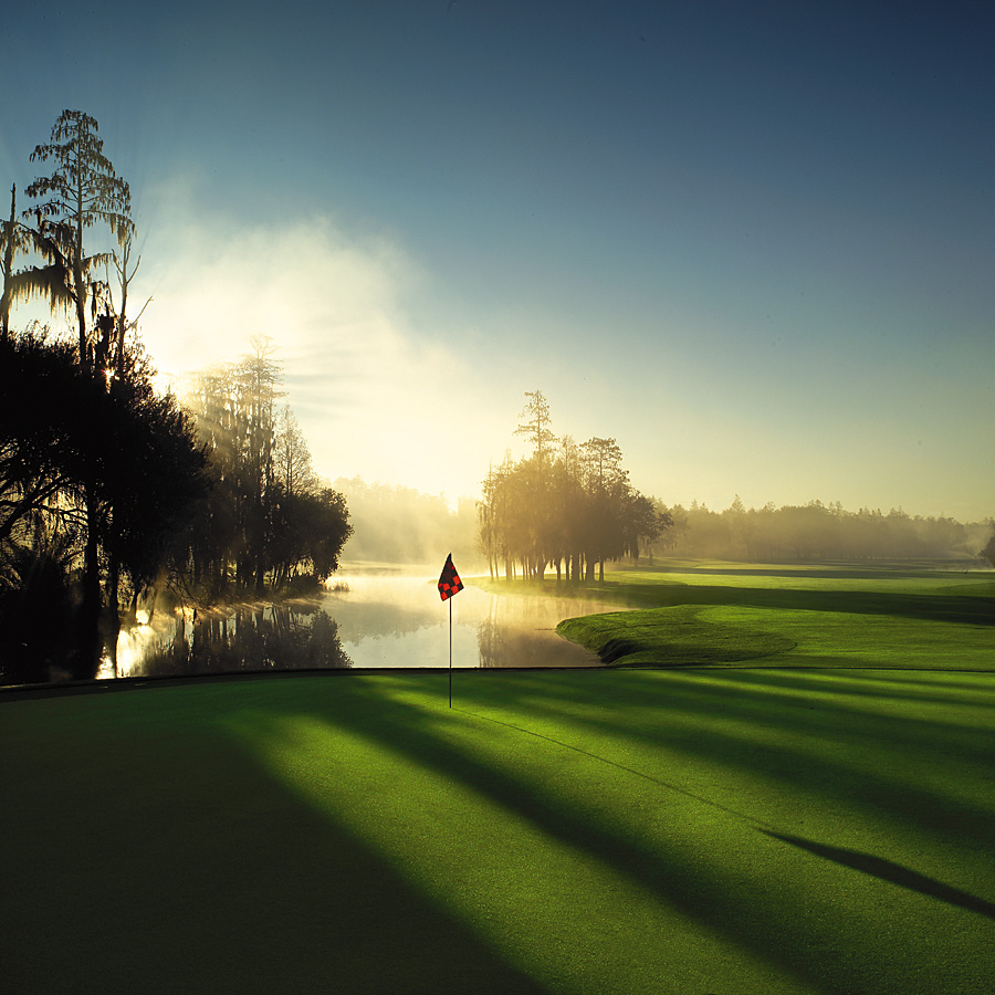 Palm_Harbor_-_Innisbrook_Golf_Resort.jpg